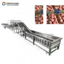 红薯清洗分级挑选生产线