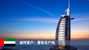 迪拜客户:大型薯条生产线