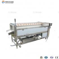 凤翔 PX-1500 高压喷淋式土豆清洗抛光机