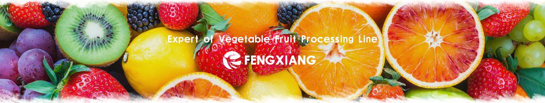 水果加工设备