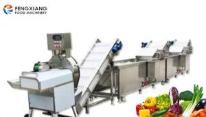 凤翔餐饮设备为某小学食堂提供蔬菜切割清洗线正式投产使用