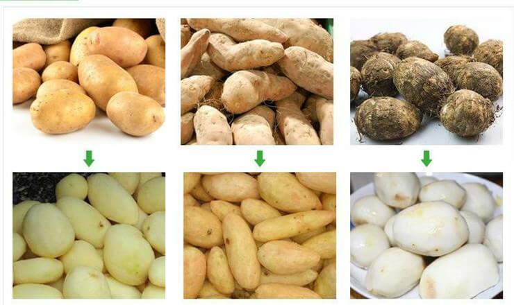 马铃薯清洗削皮机