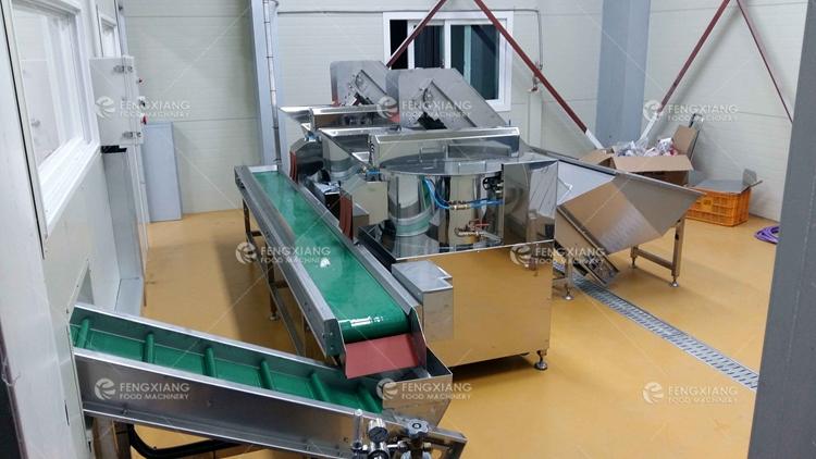 马铃薯清洗去皮生产线
