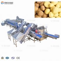 马铃薯红薯芋头清洗去皮生产线