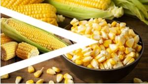玉米栗米脱粒方案
