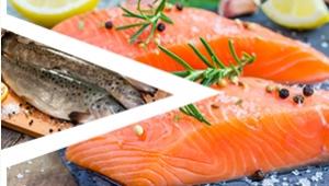 海鲜水产品清洗去皮方案