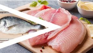 鱼类海鲜切割方案