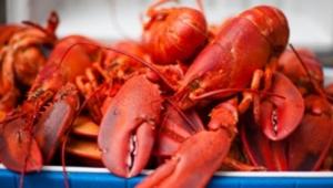 龙虾吃得香辣难清洗?看看这里