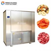 凤翔 双门烘干机 大容量食品干燥机