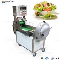 FC-301 多功能沙拉切菜机 变频蔬菜切割机
