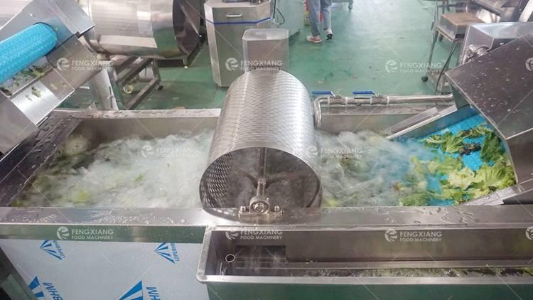 Vegetable Salad Processing Line