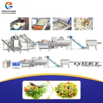 凤翔 沙拉净菜加工生产线